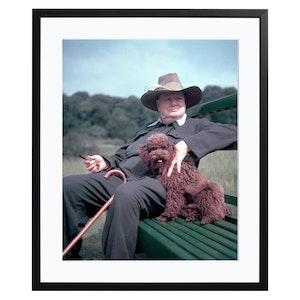 Churchill and Rufus, Colour Print