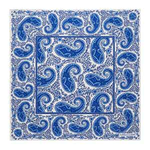Sky Blue Teardrop Paisley Silk Print Pocket Square