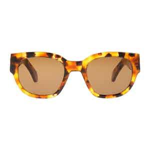 Amber Chic Acetate Tobacco Lens Sunglasses