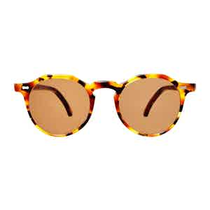 Brown Classic Tortoiseshell Acetate Tobacco Lens Lapel Sunglasses