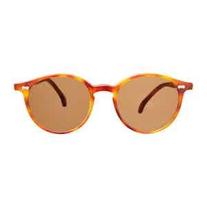 Brown Tortoishell Acetate Tobacco Lens Sunglasses