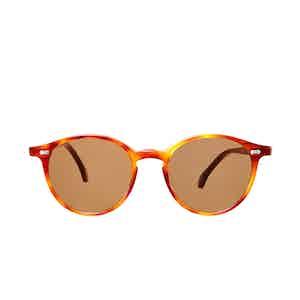 Cran Classic Tortoiseshell Acetate Tobacco Lens Sunglasses