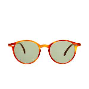 Cran Classic Tortoiseshell Acetate Bottle Green Lens Sunglasses