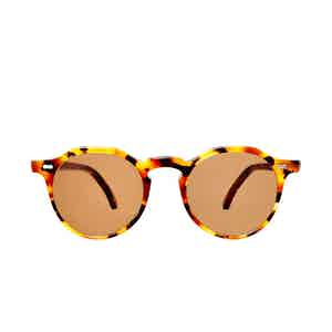 Lapel Amber Tortoiseshell Acetate Tobacco Lens Sunglasses