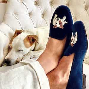 Dark Blue Embroidered Velvet Slippers – Bertie Portrait
