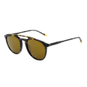 Black Tortoiseshell Acetate Jeremy Hackett Signature Collection Sunglasses