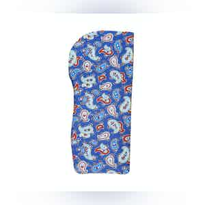 Blue and Red Paisley Silk Glasses Pouch