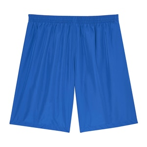 Electric Blue Swimming Shorts