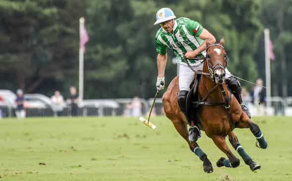 Polo: Horse Power in Flight