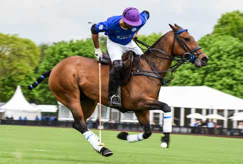 Facundo Pieres for King Power Foxes