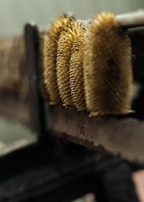 Piacenza Cashmere uses thistles in its production process – which is also reflected in its logo.