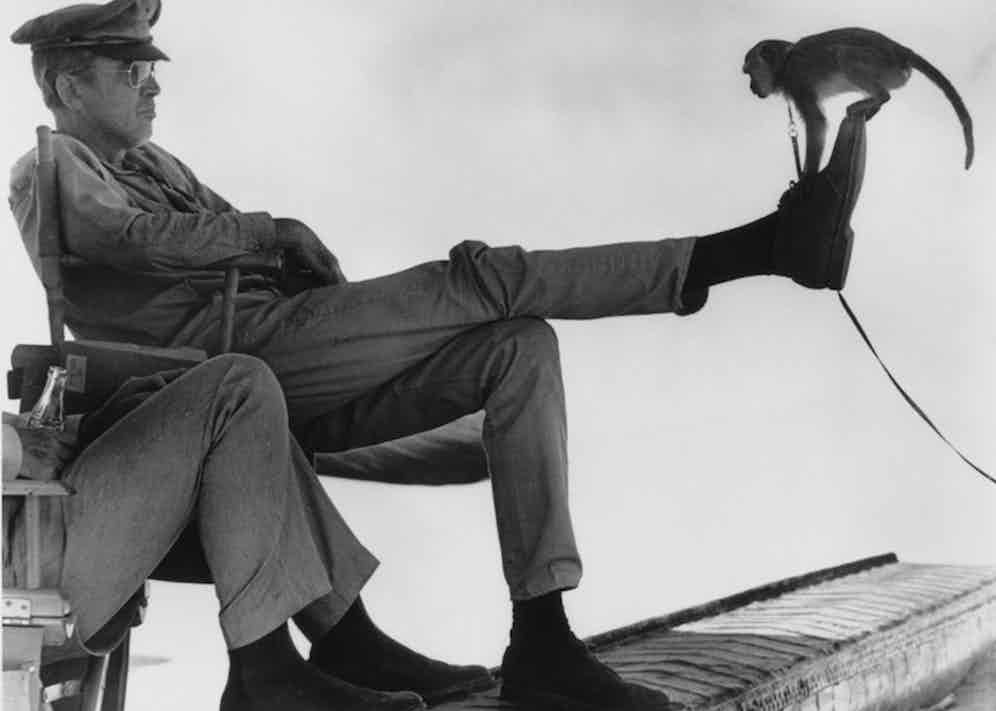 A monkey examines James Stewart's footwear on the set of The Flight of the Phoenix, 1965.