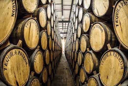 Tequila being aged in oak barrels.