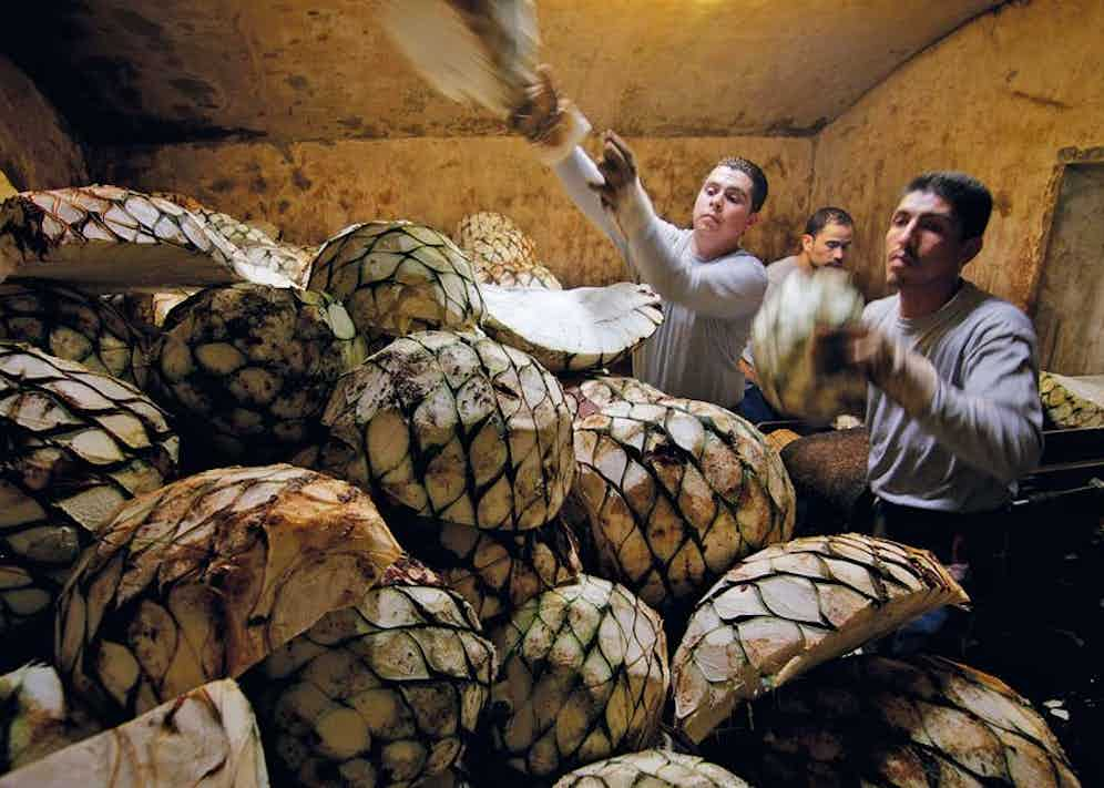 Chopped piña pieces being loaded into a furnace.