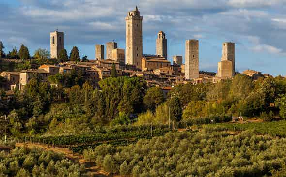 The Oenophile: Super-Tuscan Adventures