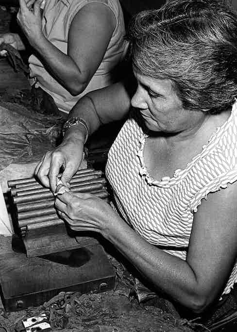 Lady skilfully rolling the cigars. (Photo courtesty of Getty Images)