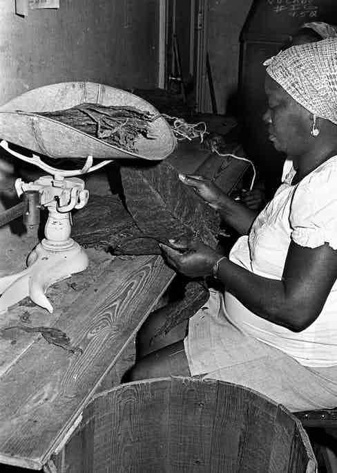 A worker sorts and weighs tobacco leaves at the Cohiba cigar factory in Havana, Cuba, Nov. 1981. (AP Photo/Prensa Latina via AP Images)
