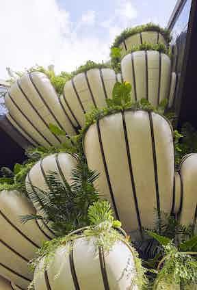 EDEN's signature shell-like balconies